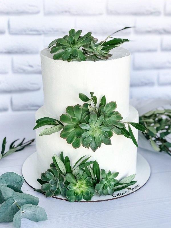 Торт Зеленая нежность - фото